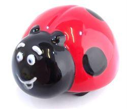 Ladybird Party Animal