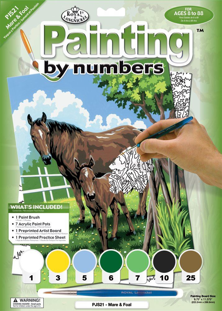 PJS21-Mare and Foal Painting by Numbers Kit front