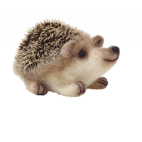 CKC-NF-162 Baby Hedgehog Needle Felting Kit