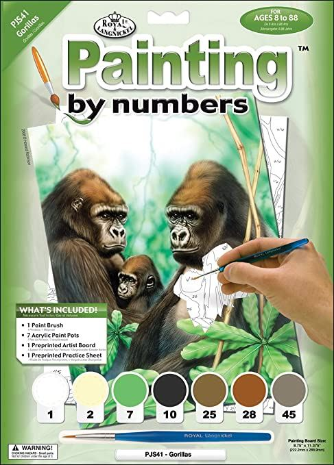 Gorillas Painting by Numbers Kit