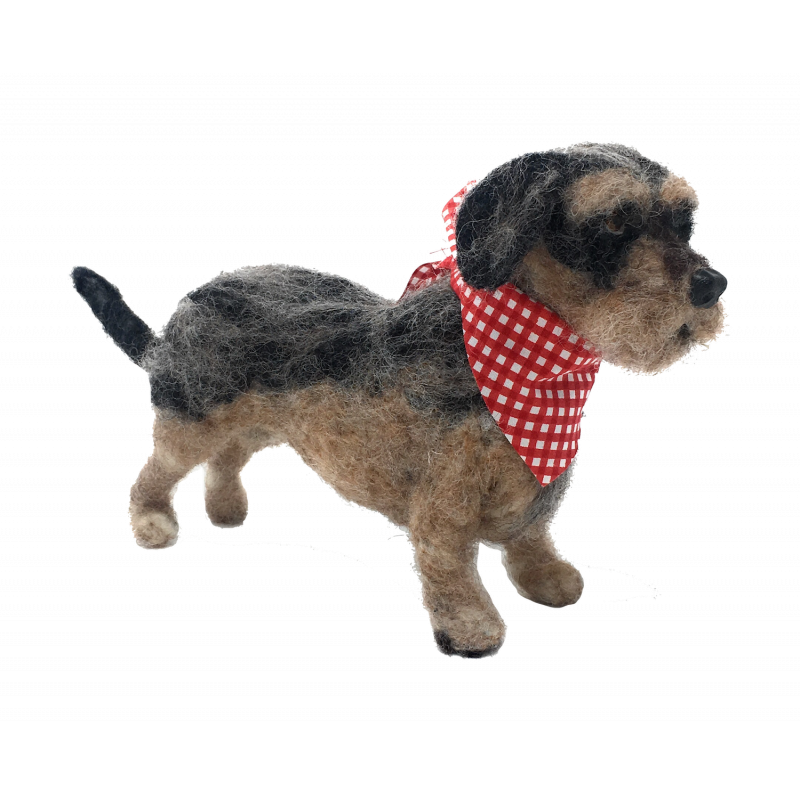 Wire Haired Dachshund (finished)