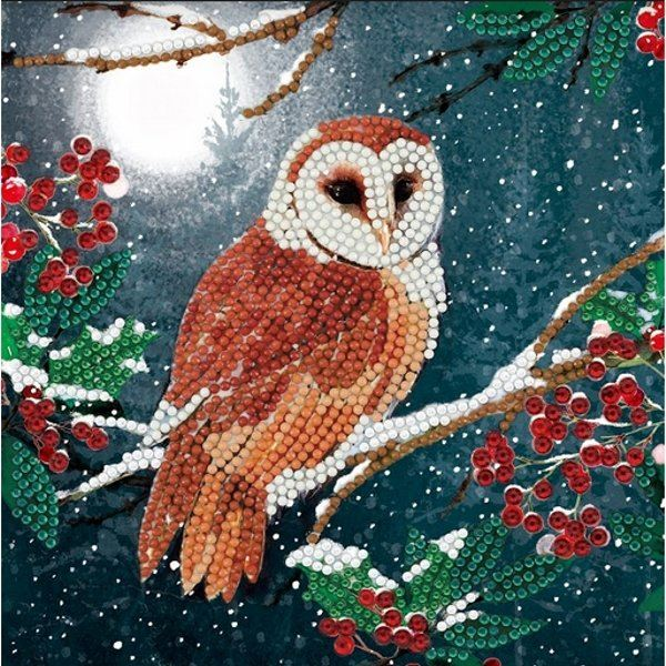 CCK-A65 Barn Owl Crystal Art Card Kit