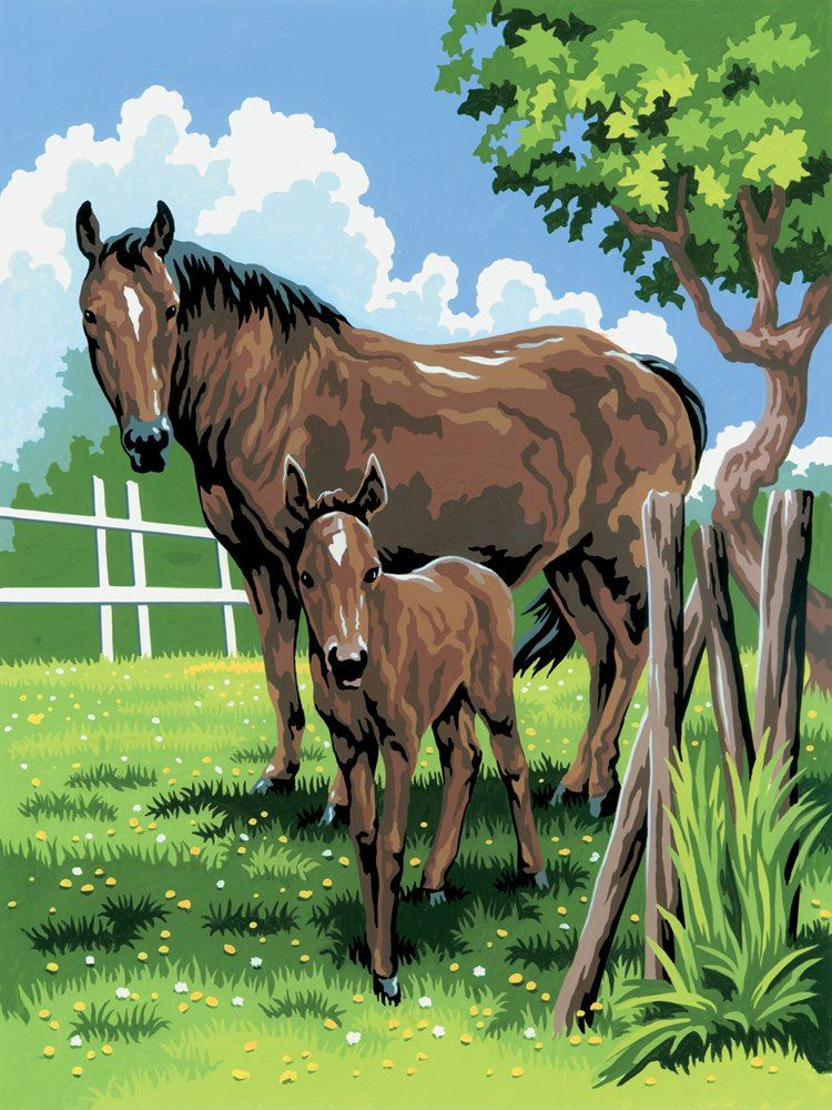PJS21-Mare and Foal Painting by Numbers